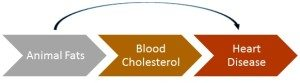 dietary cholesterol to heart disease