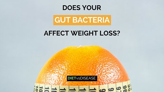 DOES YOUR GUT BACTERIA AFFECT WEIGHT LOSS