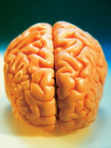 APOE4 and Alzheimer's Disease