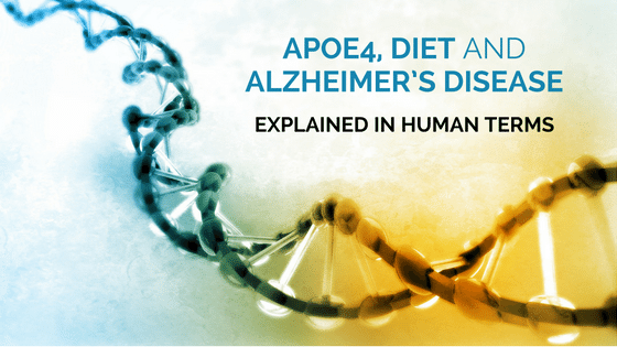 APOE4, Diet and Alzheimer's Disease: Explained in Human Terms