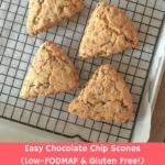 choc-chip-scones-blog-header-fodmap