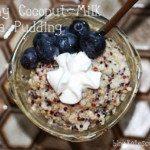 creamy-coconut-milk-quinoa-pudding-fodmap