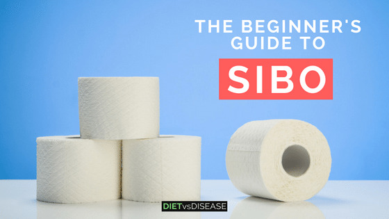 The Beginner's Guide to SIBO: Antibiotics and Diet Recommendations