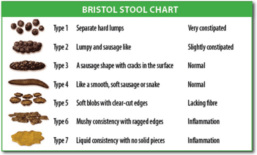 Bristol stool chart constipation