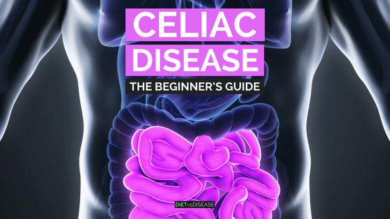 Celiac Disease- The Beginner's Guide
