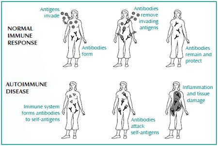 Do Nightshades Cause Autoimmune Disease