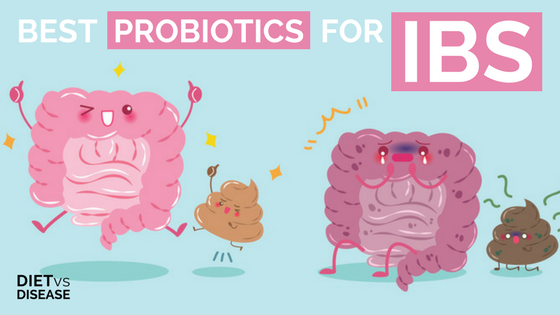 Best Probiotics For Irritable Bowel Syndrome (IBS ...