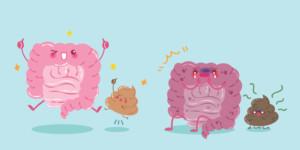 probiotics and constipation