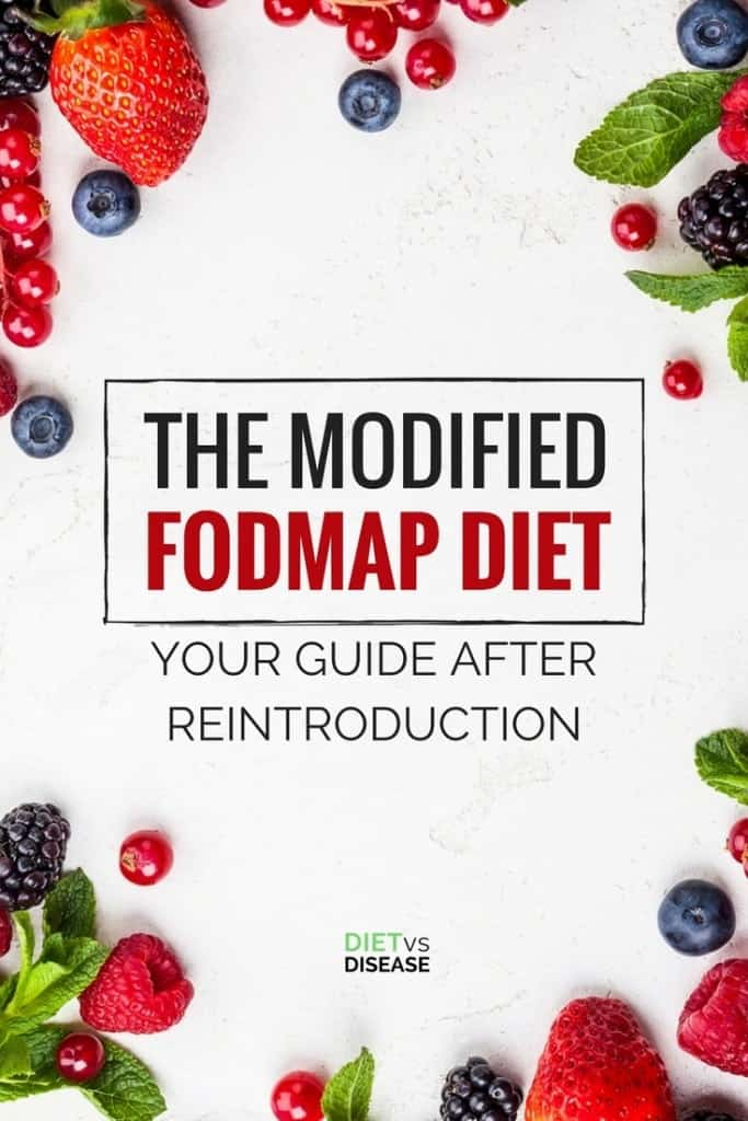 THE MODIFIED FODMAP DIET PIN