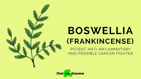 Boswellia Serrata (Frankincense): Anti-Inflammatory & Cancer Fighter