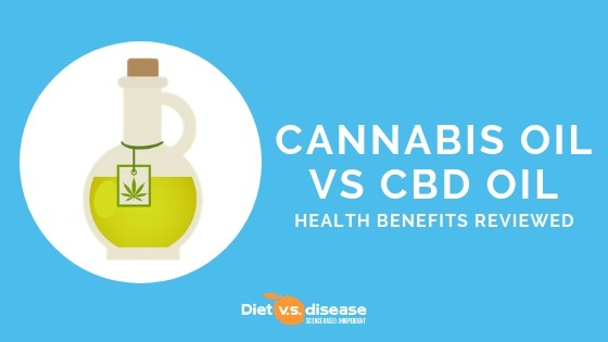 Cannabis Oil vs CBD Oil_ Health Benefits and Legal Considerations