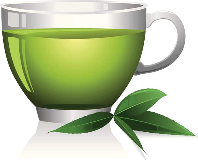 Green Tea Extract in Leptigen - does it work?
