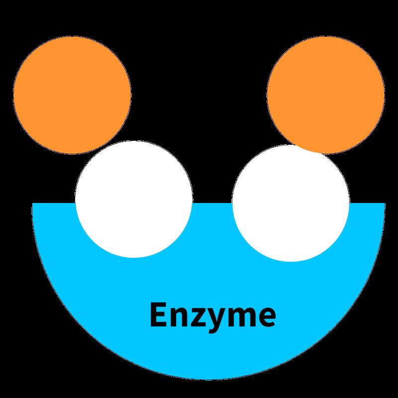 Digestive Enzyme Blend