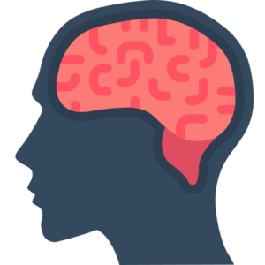 Vagus Nerve Functions